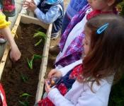 Our littel bio garden